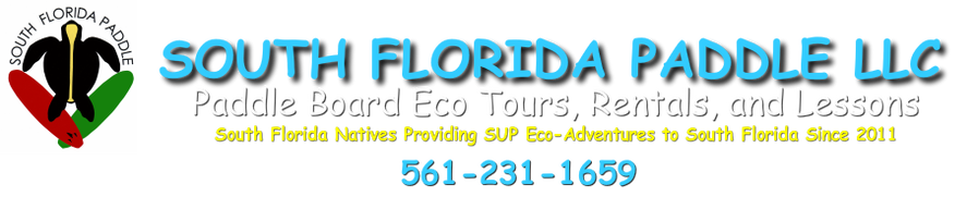 Paddle Boarding Lessons, Tours and Rentals - Singer Island, Fl - South Florida Paddle